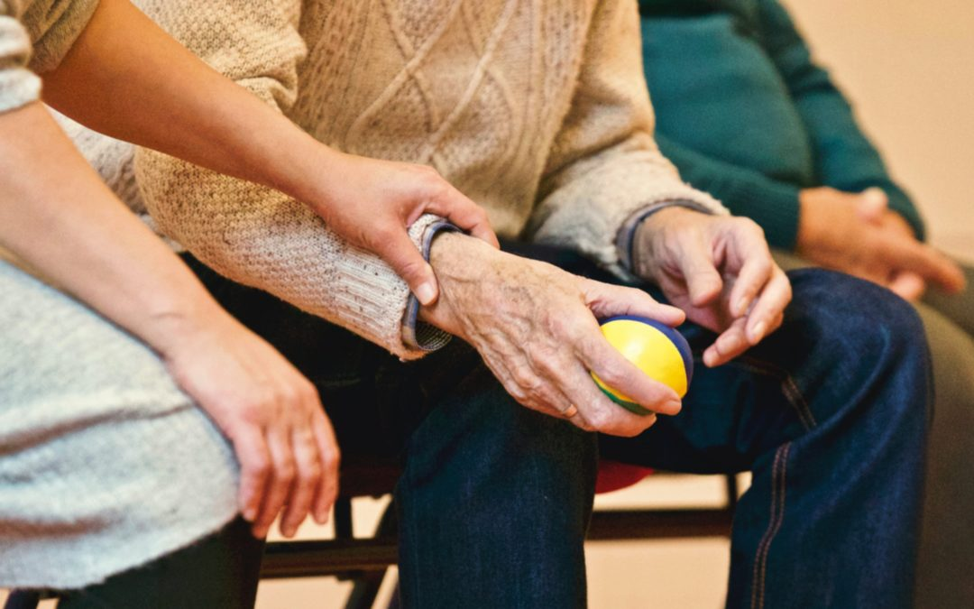 What programs are offered under the Office of Aging Adult Services?